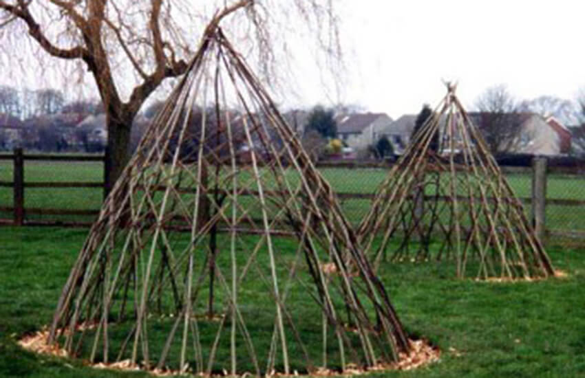 Newly Planted Living Willow Tepee